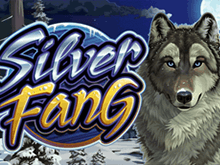 Silver Fang – игровой автомат на деньги с возможностью вывода