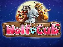 Wolf Cub — играть в игровой автомат онлайн от Netent