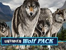 Untamed Wolf Pack — играйте в азартный игровой слот