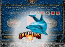 Dolphin's Pearl: игровой автомат от компании Novomatic